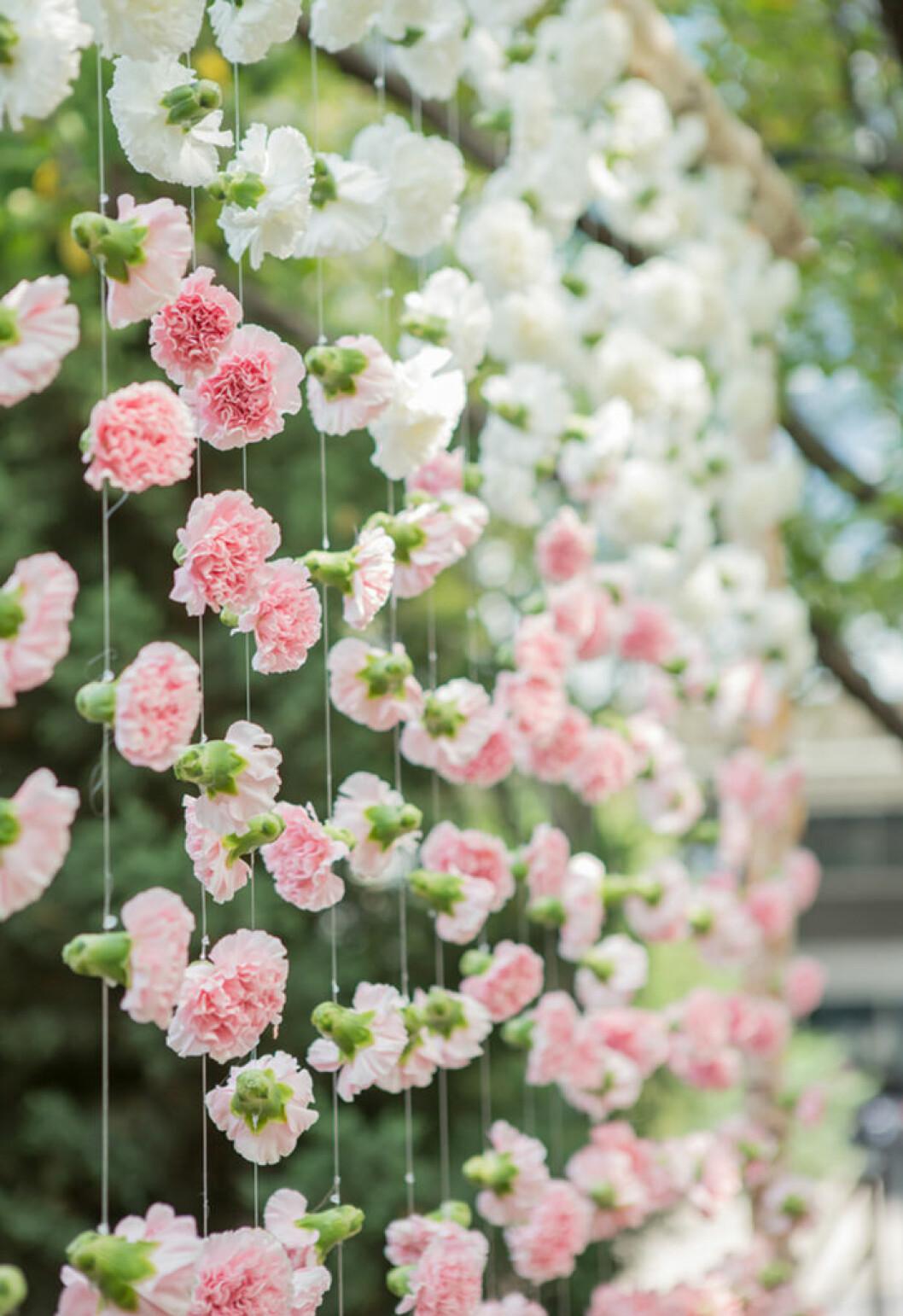 Blomstervägg.