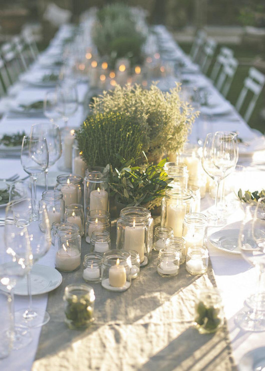 Dekorera med krukväxter på bröllopet