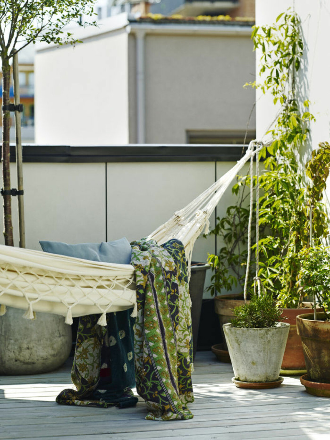 Hängmatta på balkong med växter runt