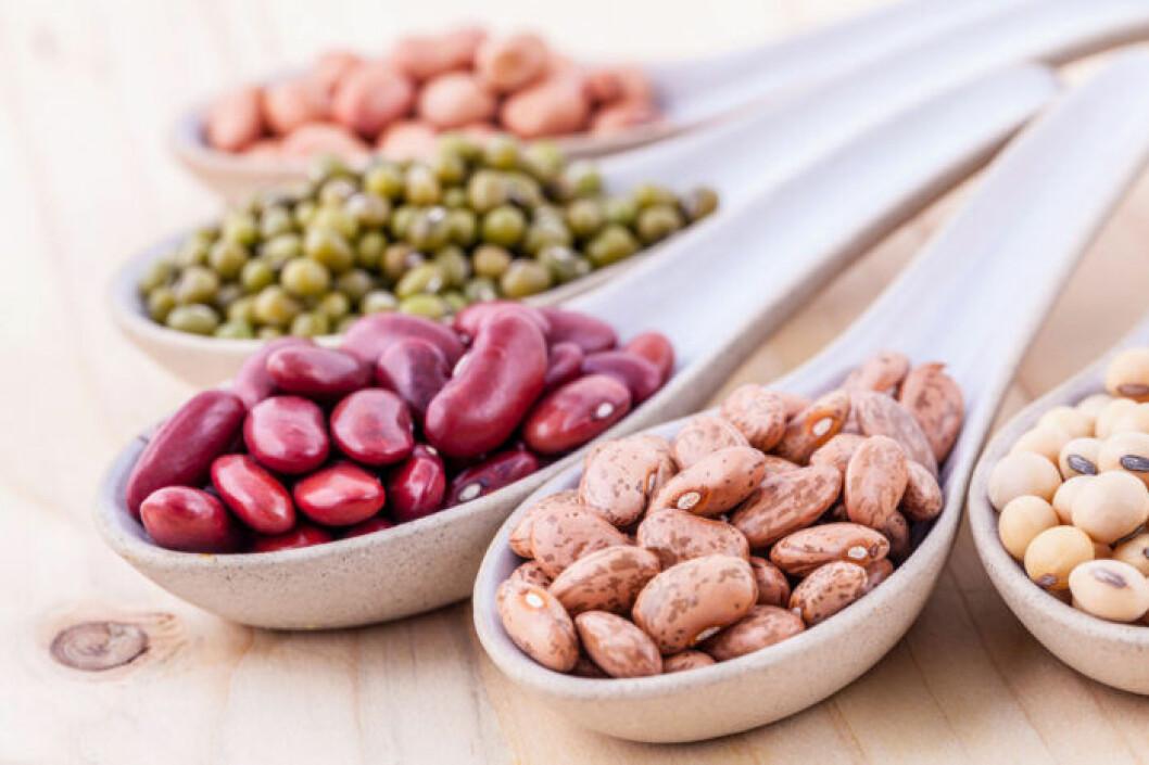 Proteinrika bönor istället för proteinpulver i din smoothie.