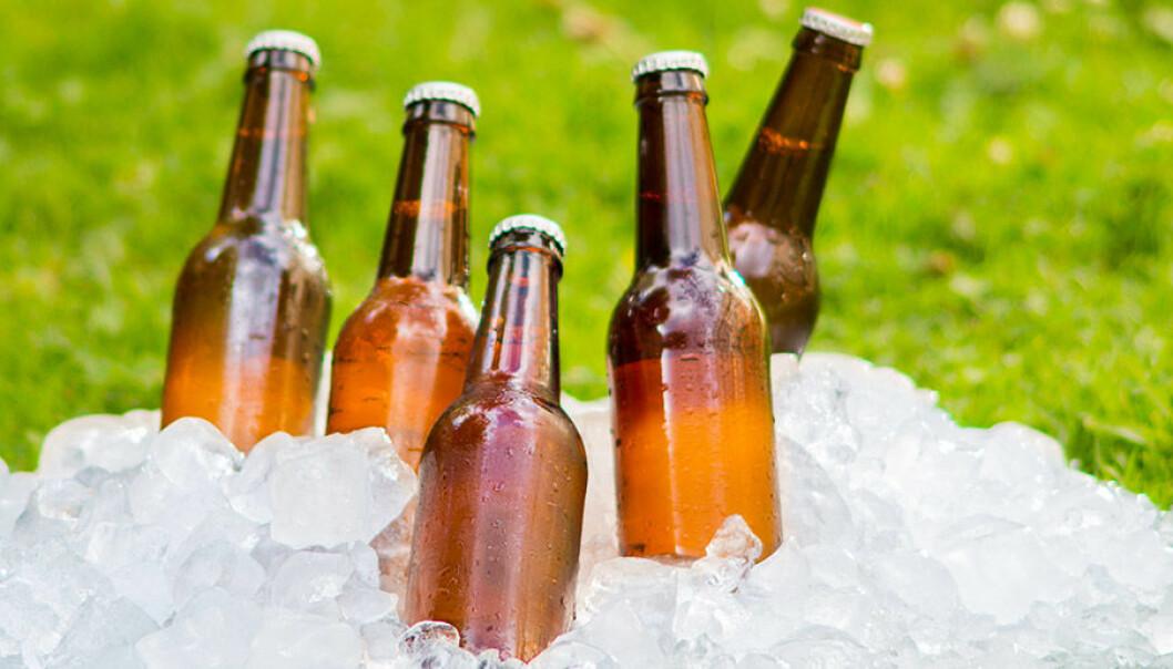Brygg egen öl till midsommar!