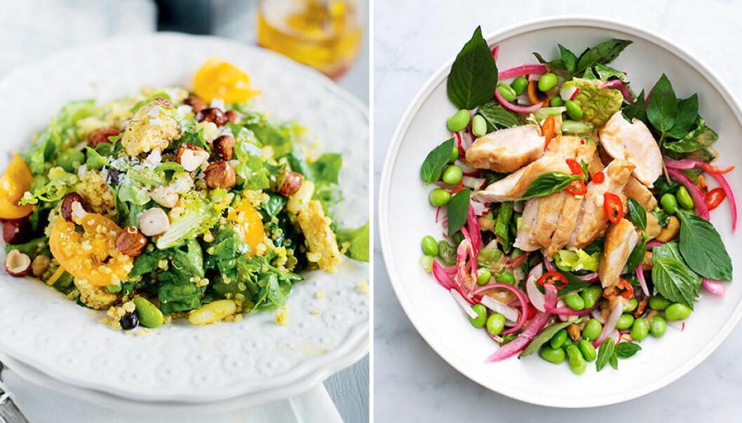 Lär dig att bygga den perfekta salladen!