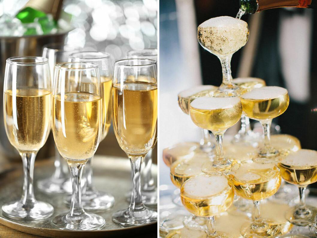 Flöjt- eller coupeglas, vad väljer du? Foto: Shutterstock
