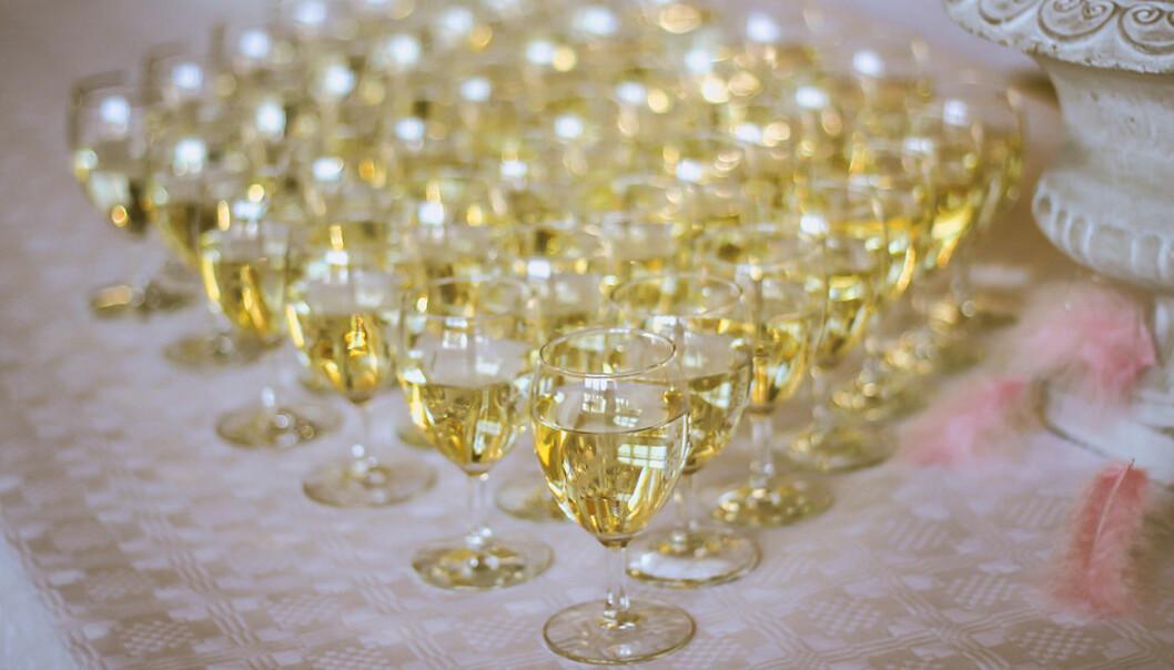 Champagnetrender att ha koll på 2021