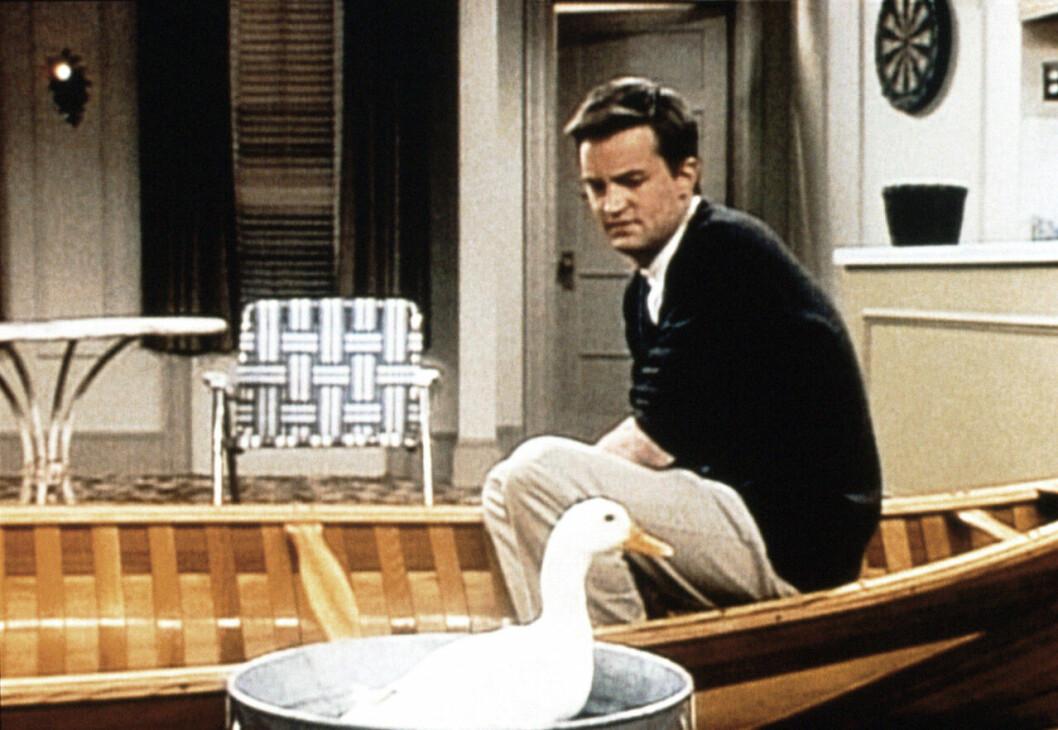 Matthew Perry som Chandler Bing