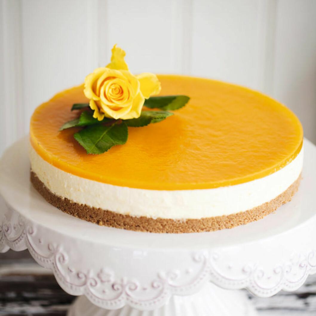 Cheesecake med passionsfruktsgelé.