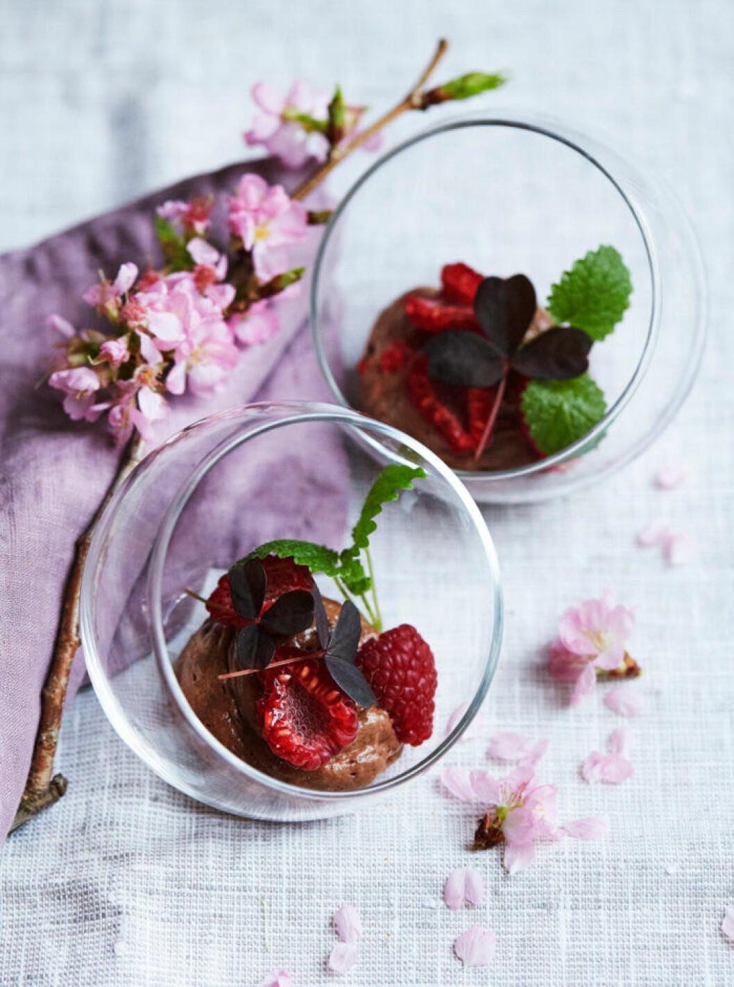 Recept på chokladkräm med olivolja, hallon och flingsalt