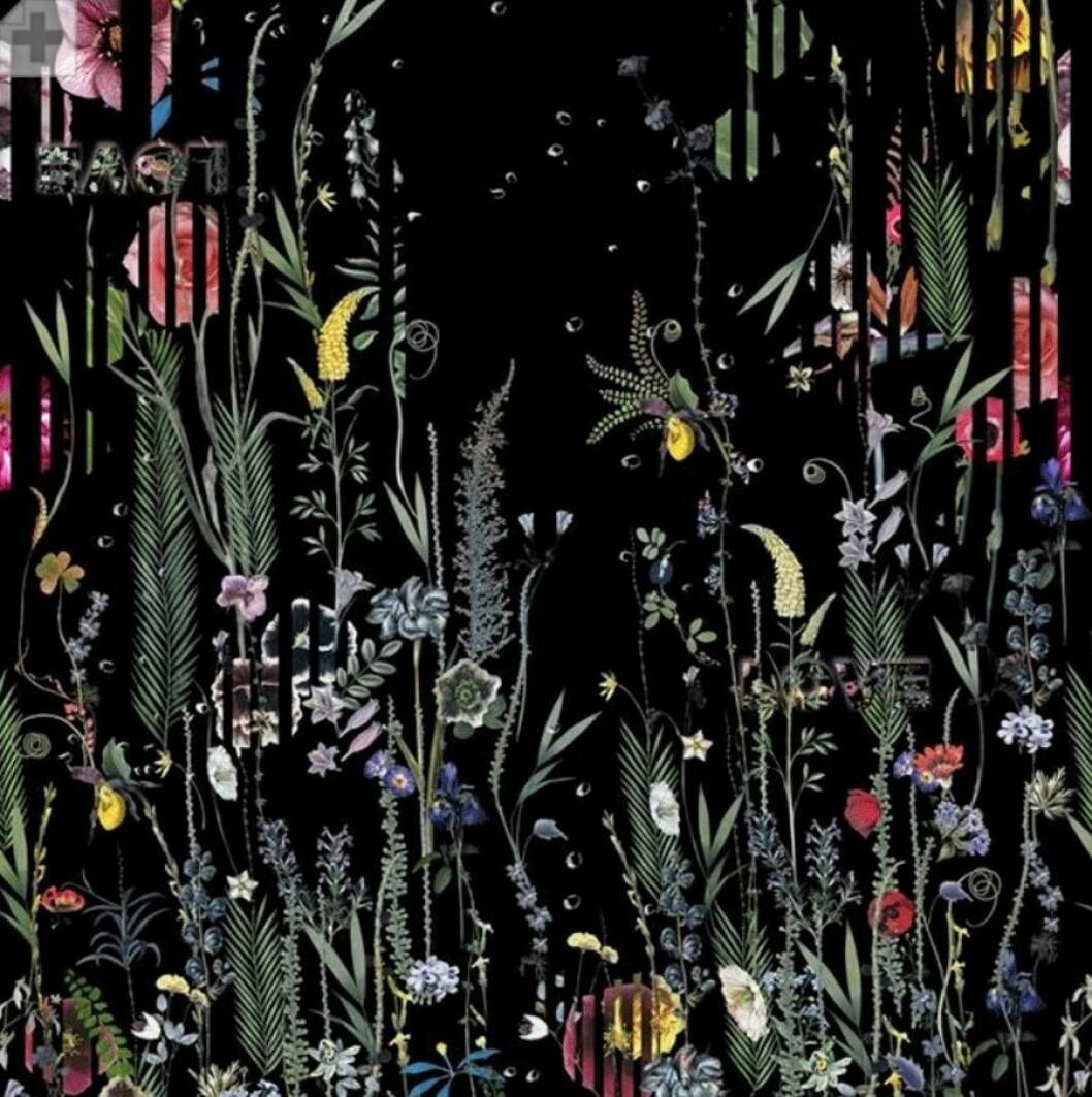 Svartmålad tapet med växter