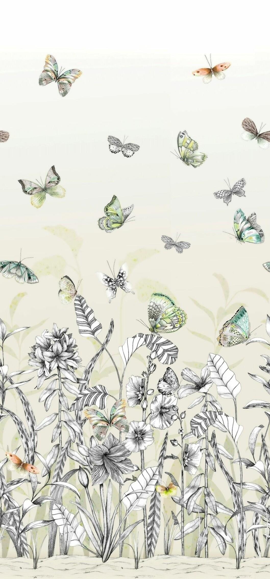 Tapet med blommor och fjärilar