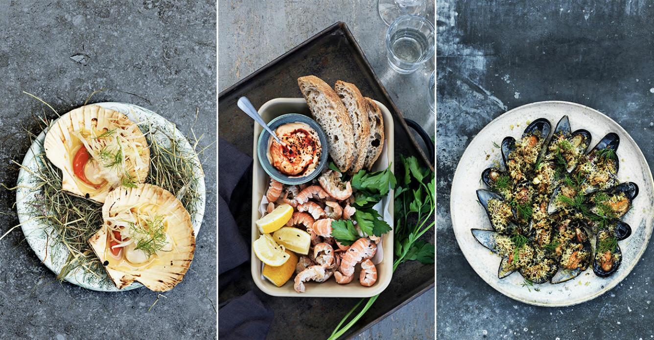 3 recept på skaldjur – direkt från havet