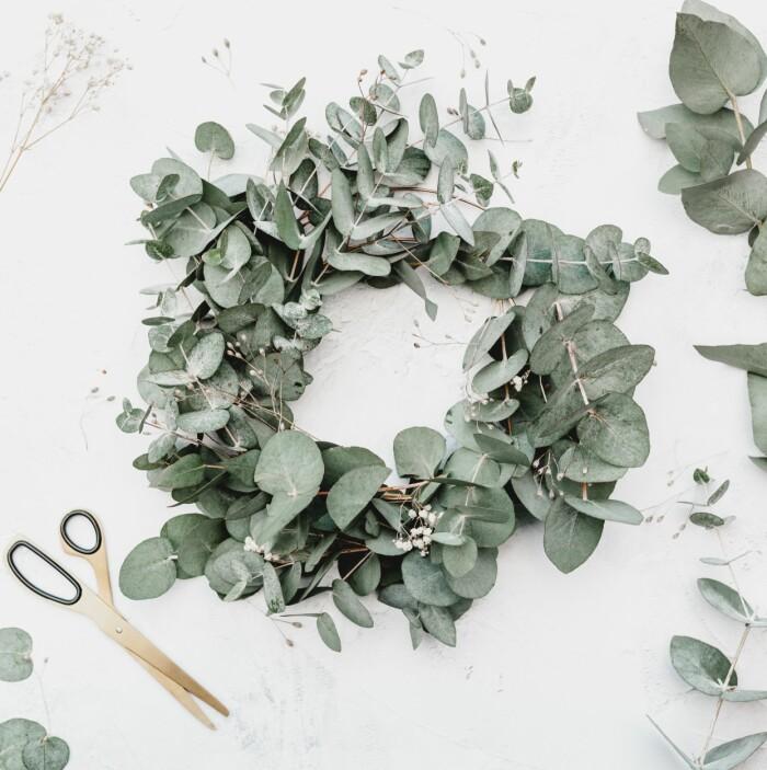 DIY-julkrans med eucalyptus
