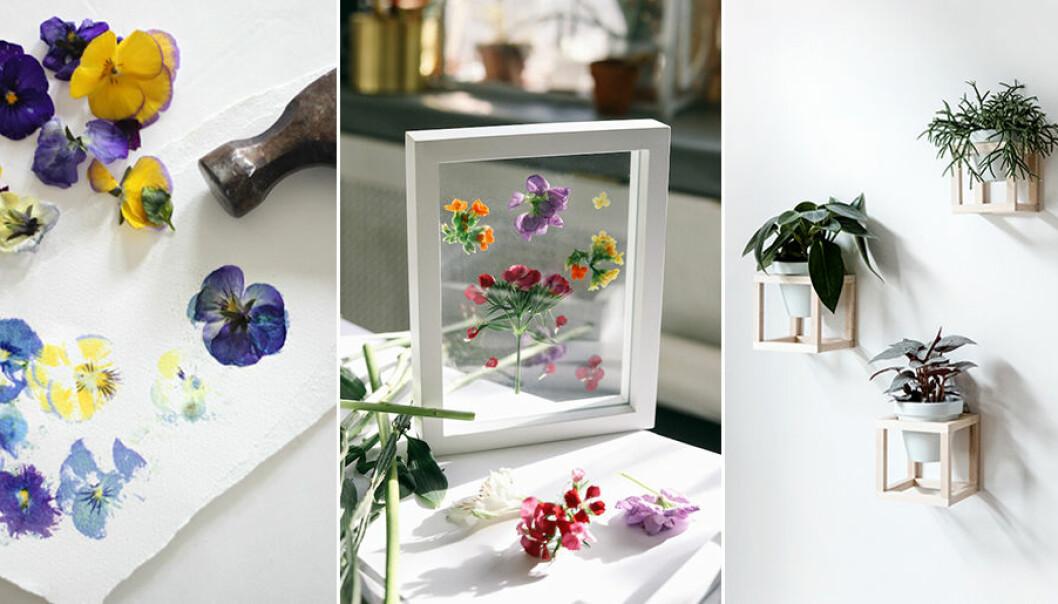 Här hittar du flera DIY-projekt för sommaren.
