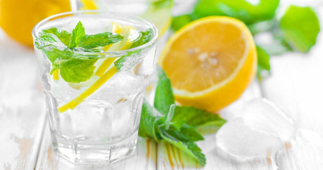 Smaksätt ditt vatten med mynta och citron!