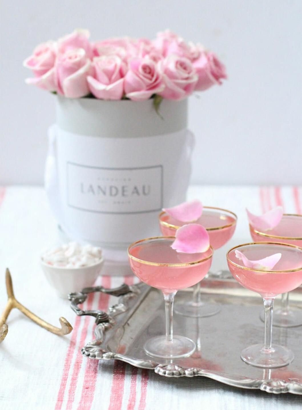 Drinken Pink Rose
