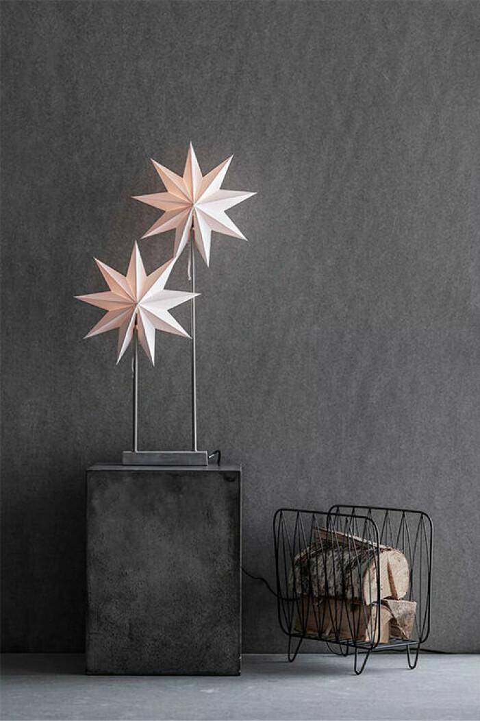 dubbla julstjärnor på fot