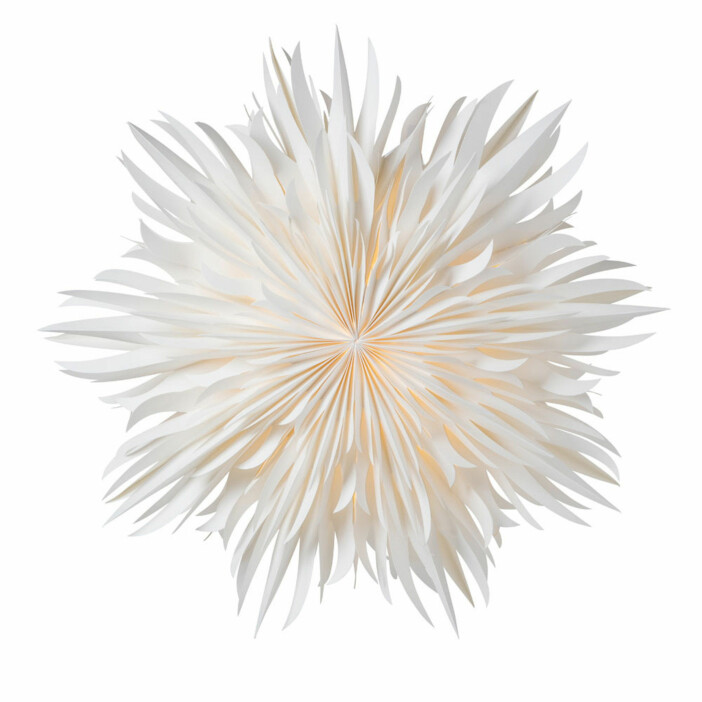 Eldig julstjärna med vackra detaljer från Watt & veke.