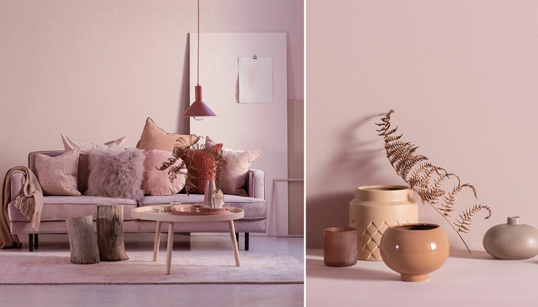 Ellos rosa kollektion med Daniella Witte