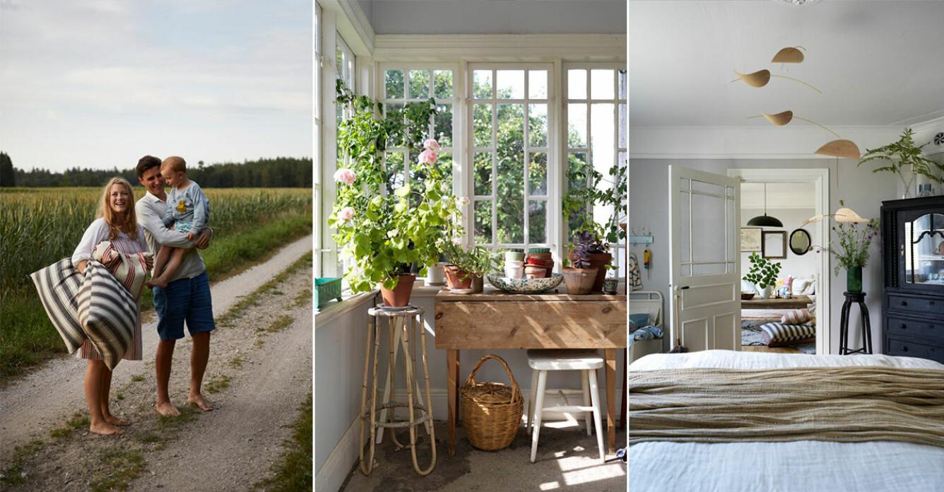 Elsa Billgren sommarhus på Gotland