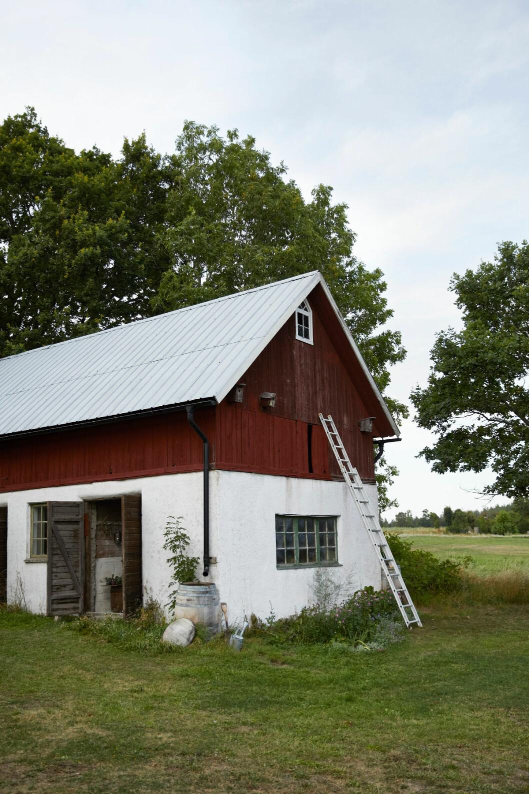 Elsa Billgren sommarhus Gotland ladan