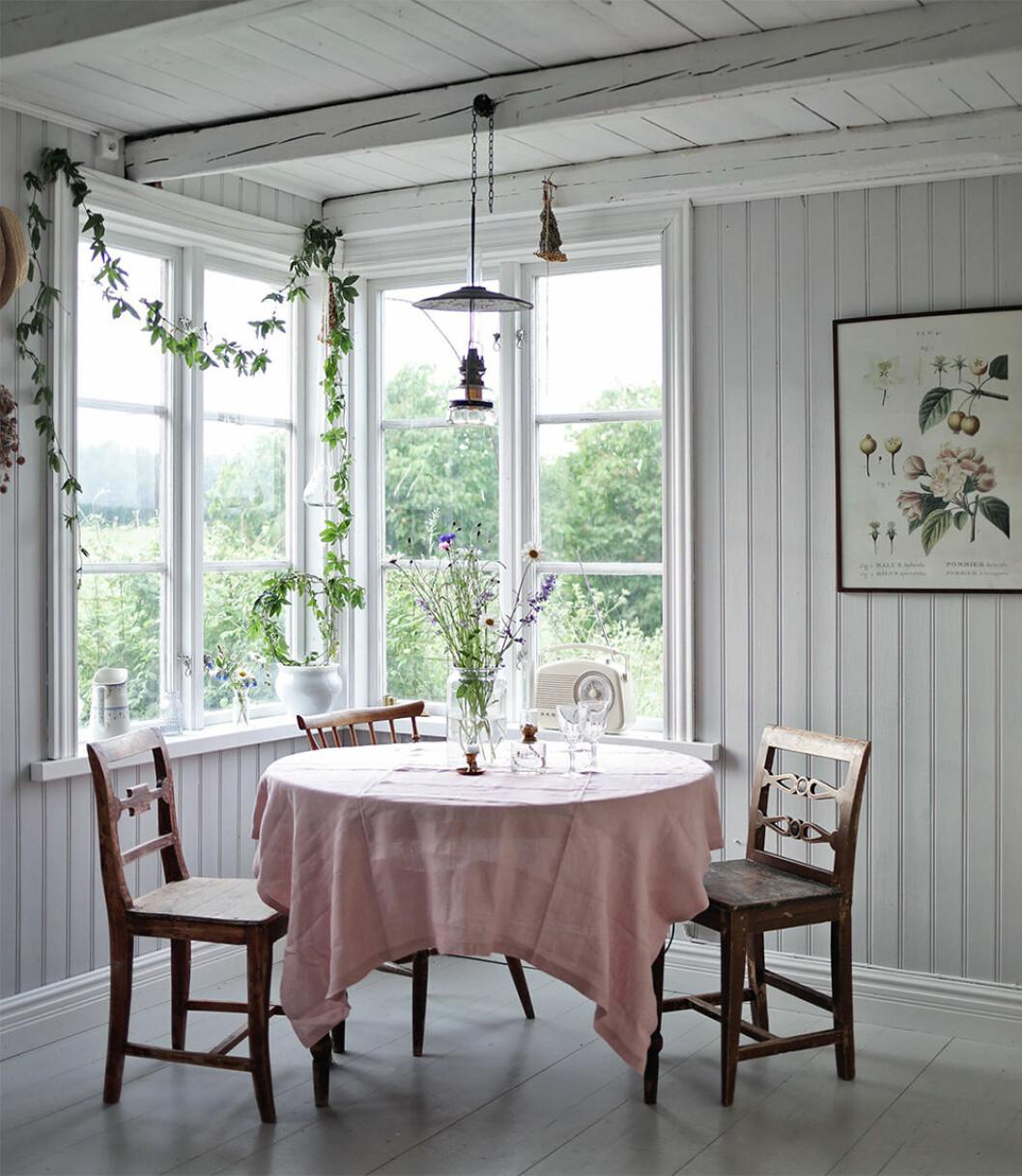 Matplats i sommarhus på Gotland