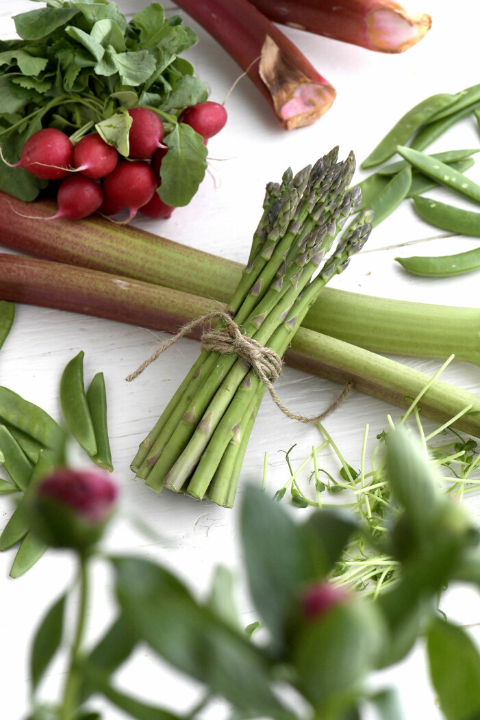 Enkla grönsaker att odla i växthuset, rädisor