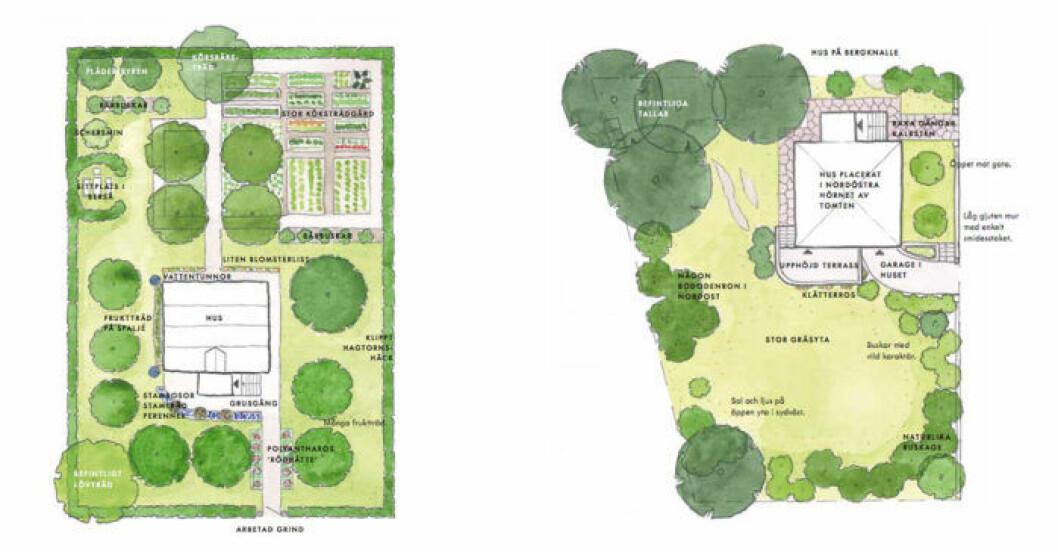 Exempel på trädgårdsdesign