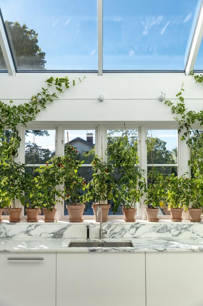 Färingsöhuset Malin Cropper Elle Decoration köksbänk pelargoner i fönstret