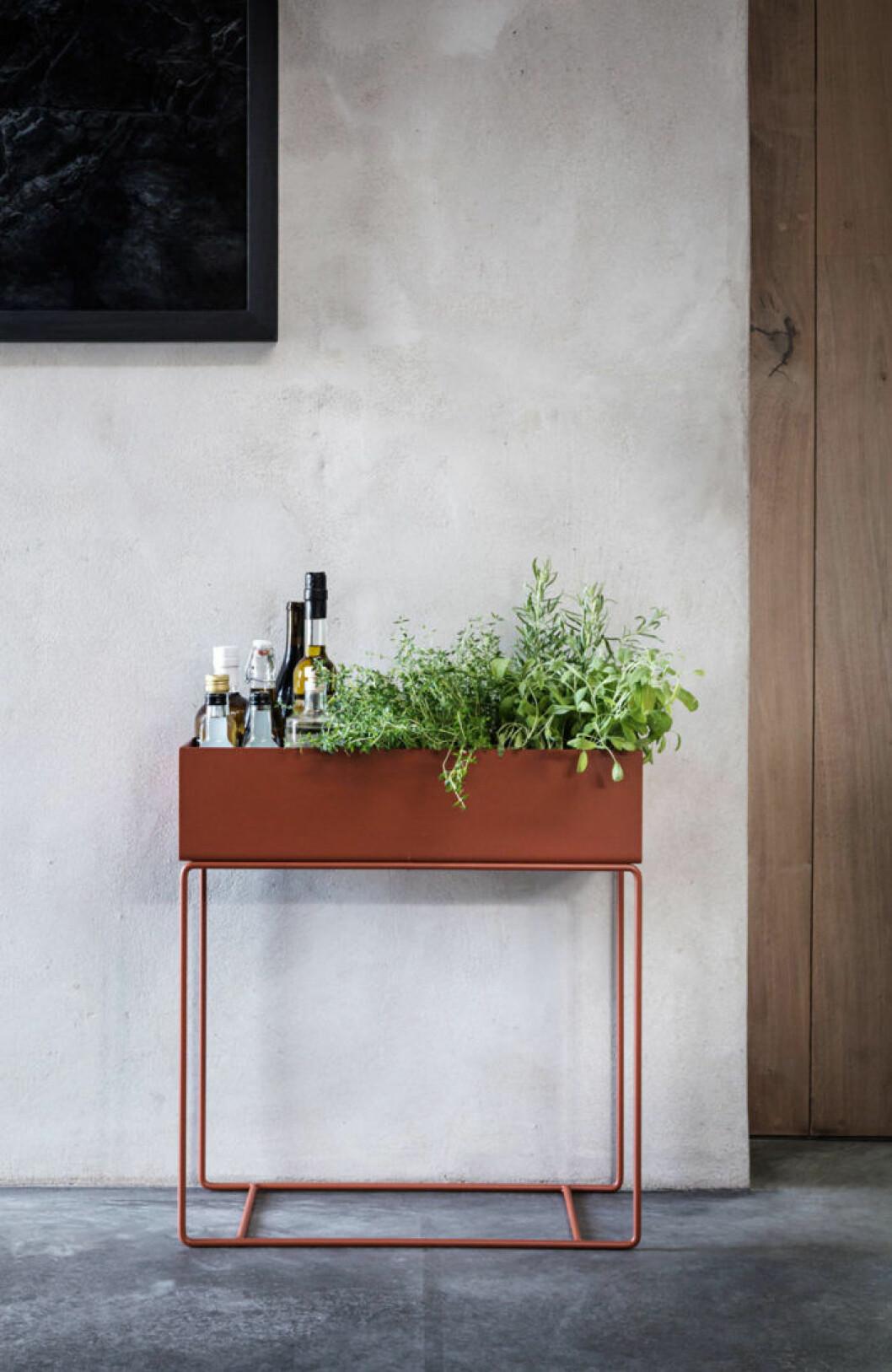 Blombord inredd med kryddor och flaskor