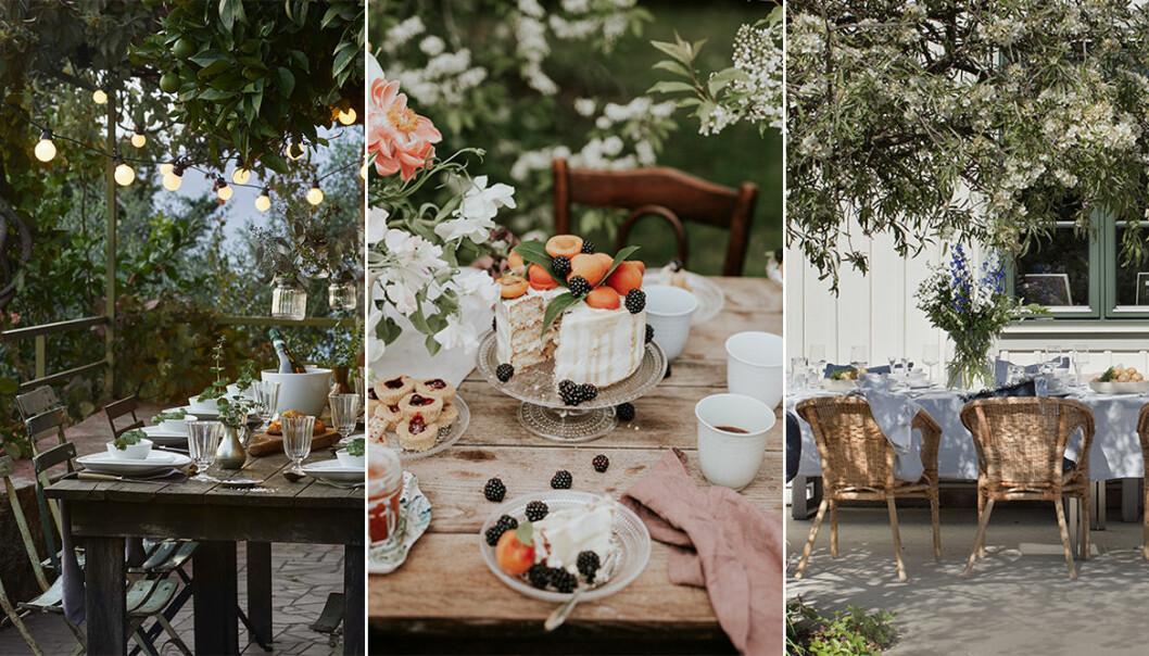 fest och middag utomhus i sommar - tips som gör det lyxigt