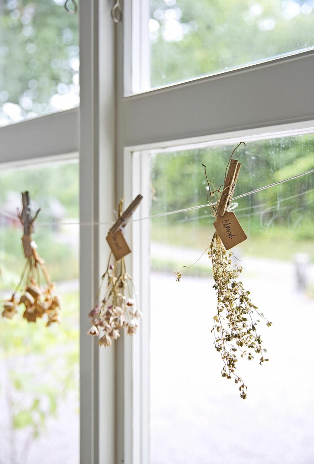 Blombuketter och dekorationer som är enkla att göra själv i sommar