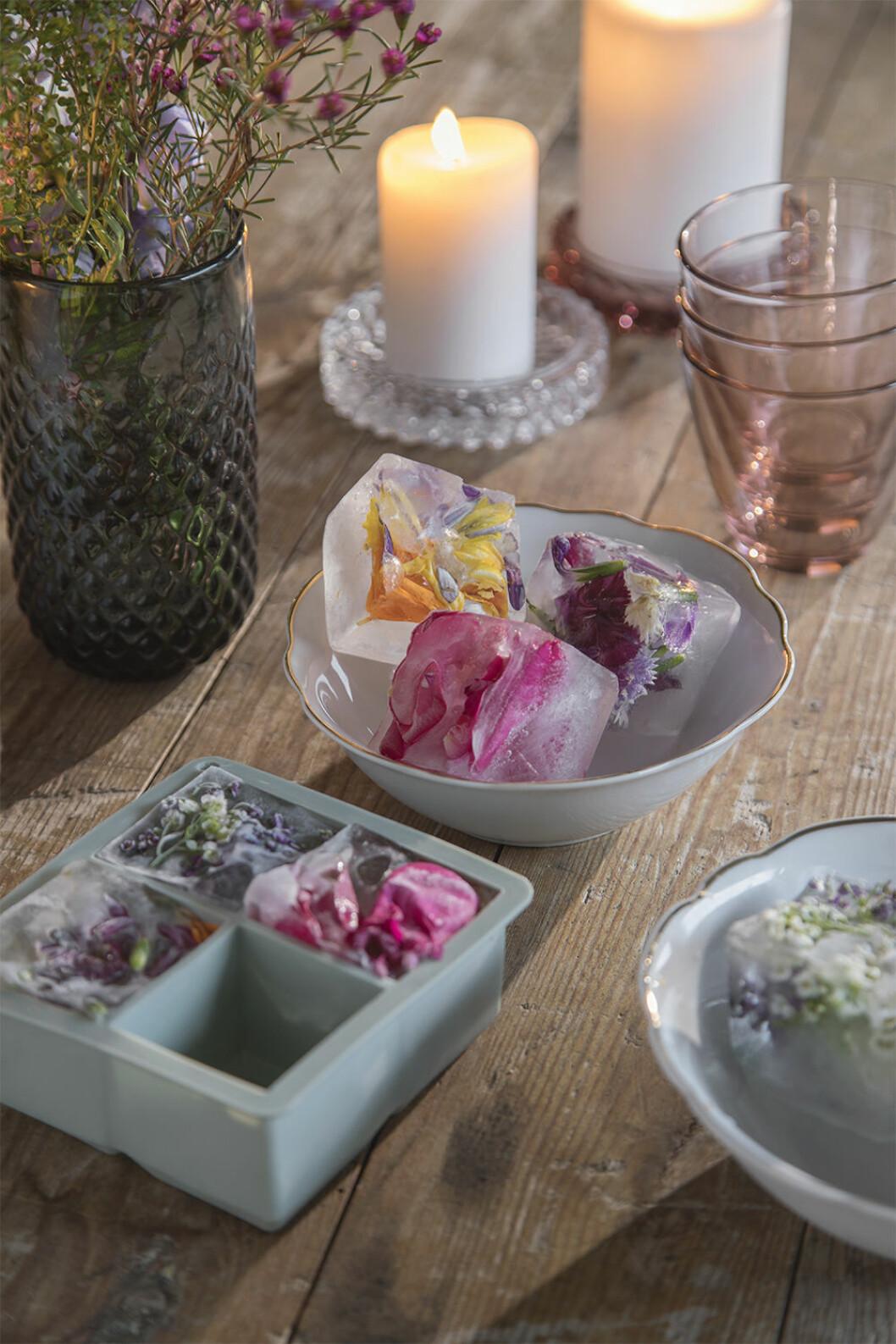 Iskuber med blommor i - enkelt DIY-projekt att göra själv