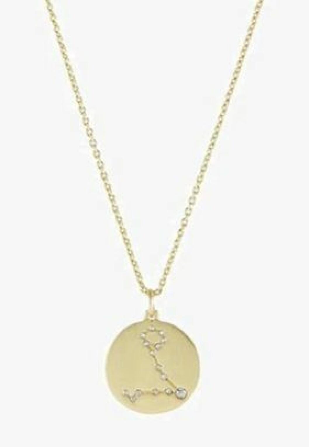 Fiskarna horoskop halsband i guld
