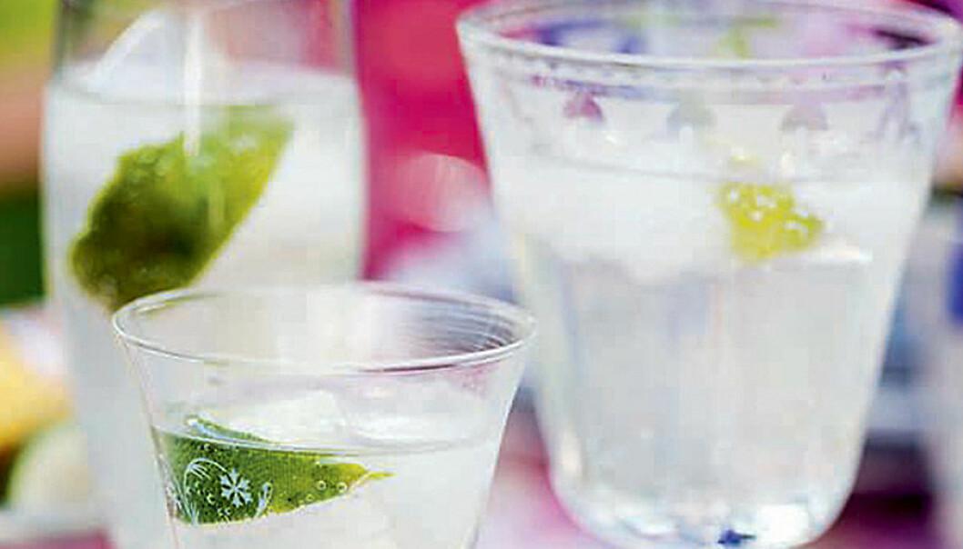 Fläderdrink med vodka och lime.