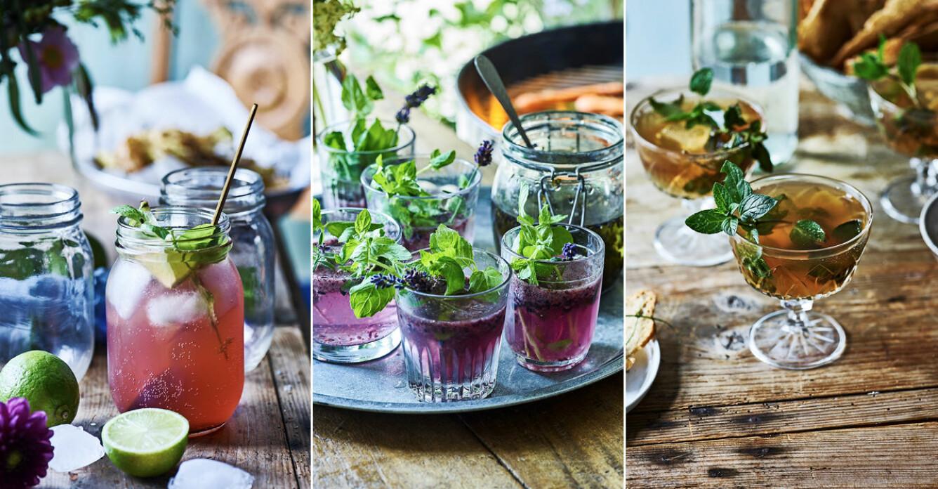 Bjud på en fördrink – 6 cocktails