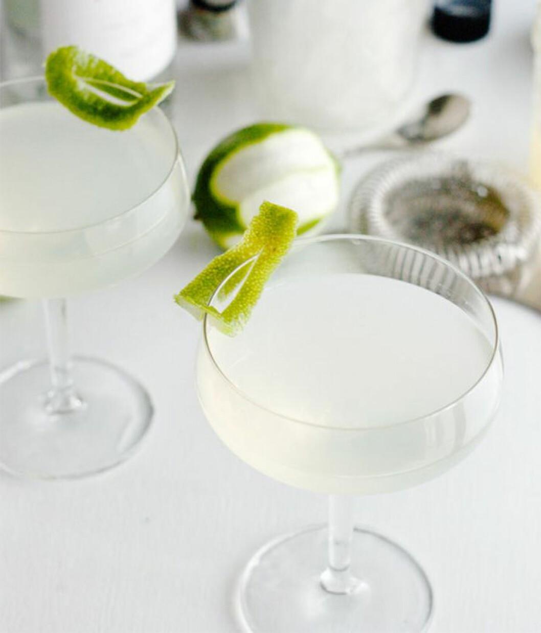 Enkel drink: The Gimlet