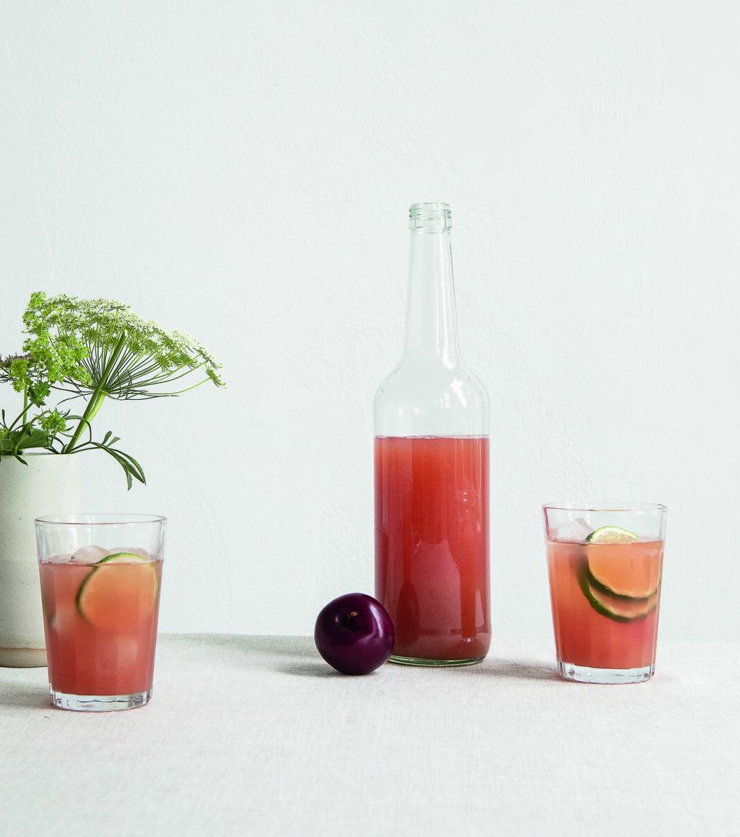 Recept gin&tonic plommonshrub
