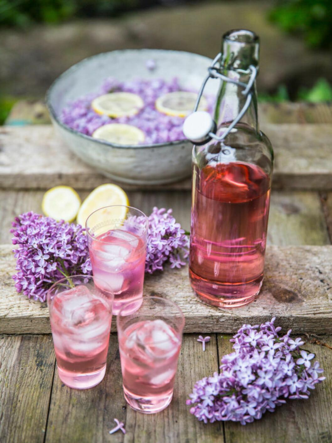 Recept på gin och tonic med syren
