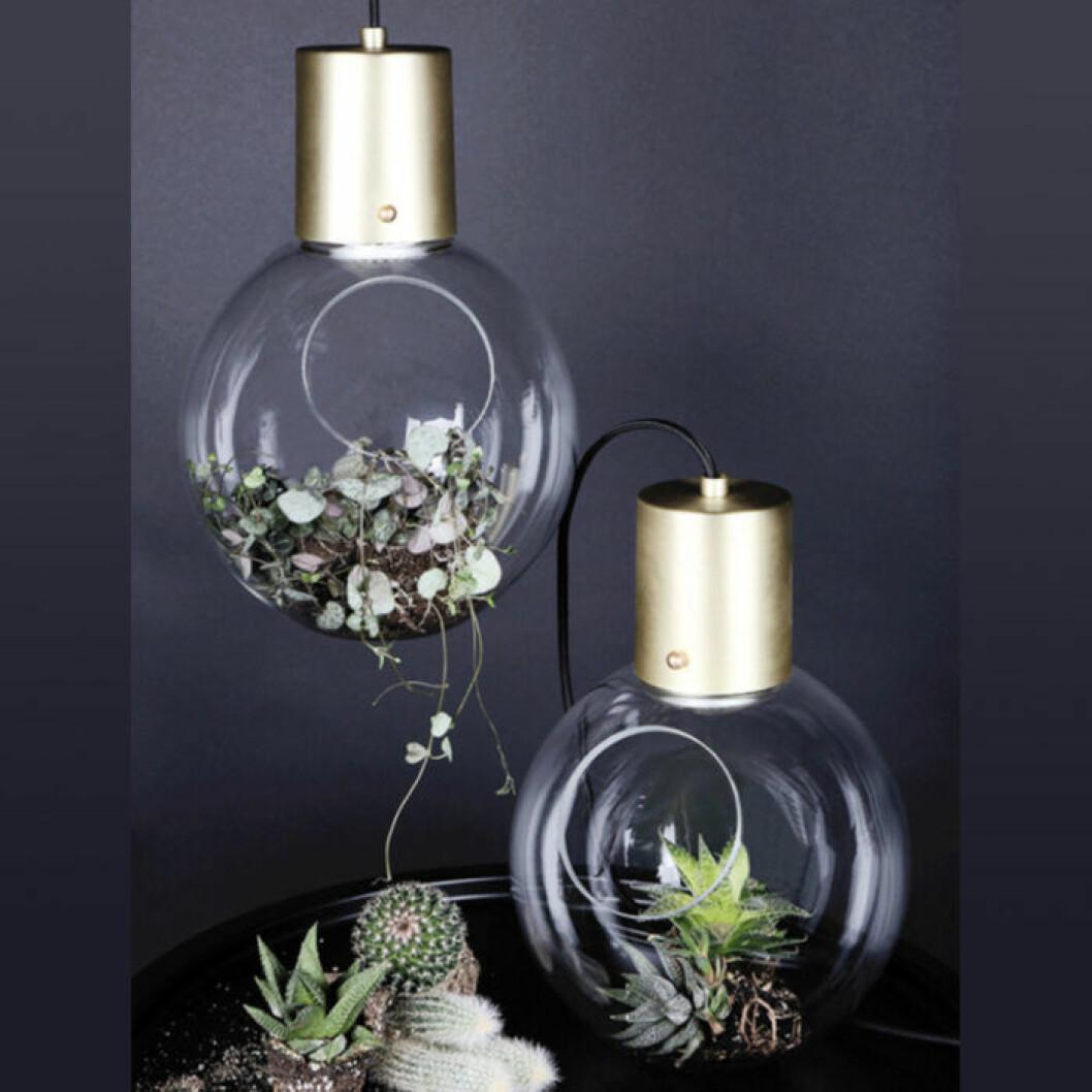 lampa med plats för gröna växter