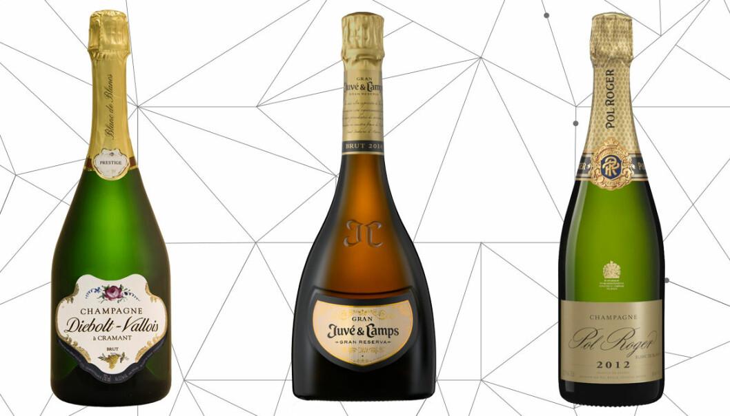 De 6 bästa och godaste champagnerna till nyår