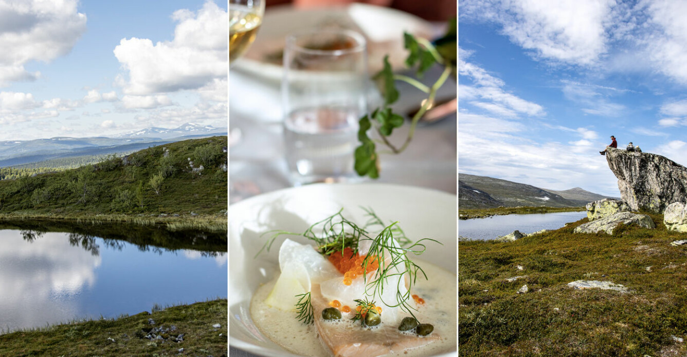 Hajka, ät, njut – gourmetvandra i sommar
