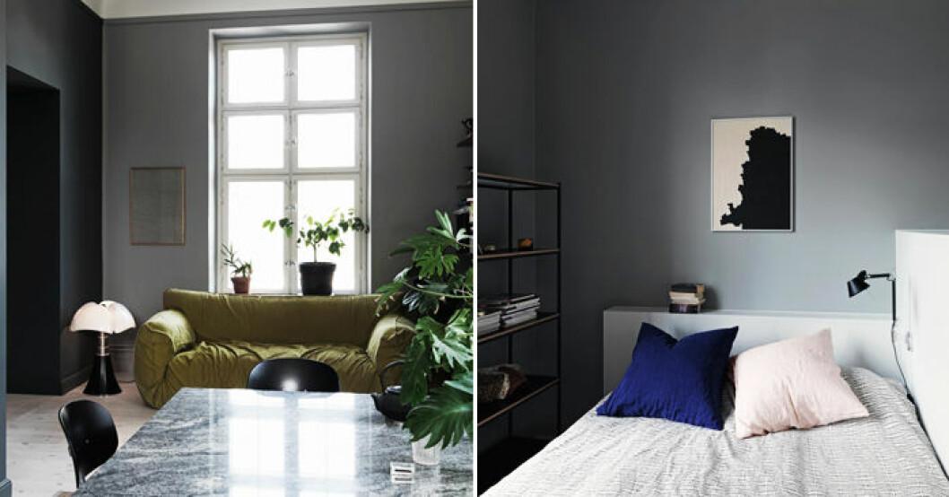 Välj rätt grå nyans till väggarna.