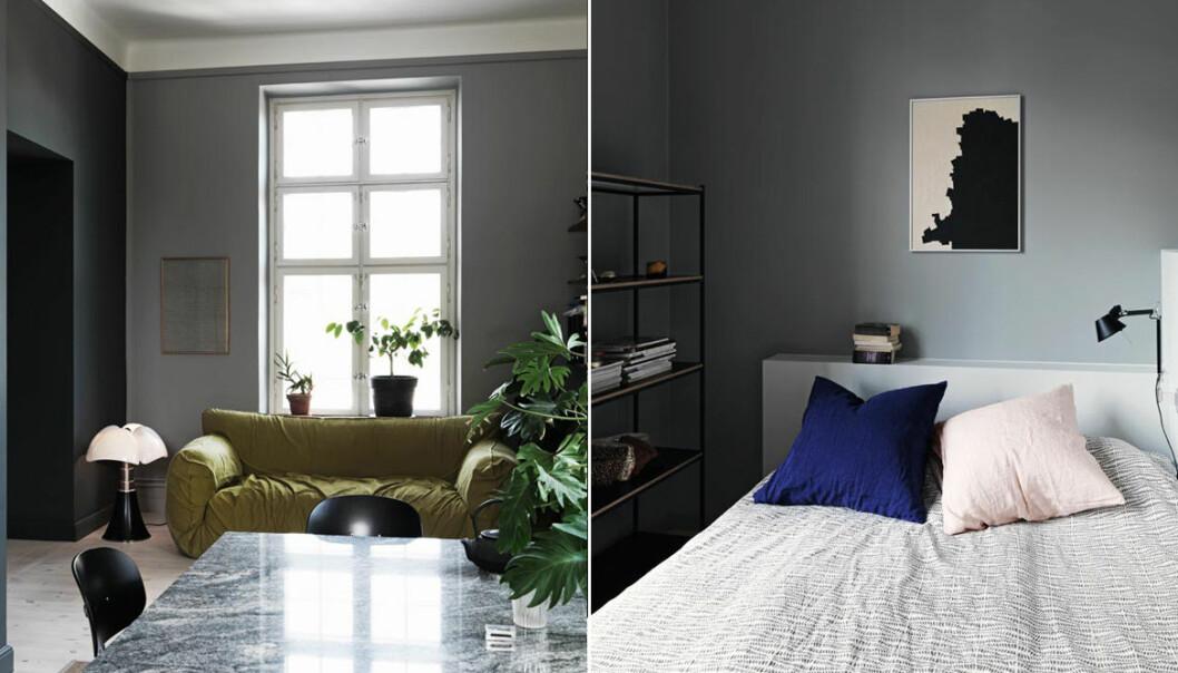 Så väljer du rätt grå nyans till väggarna