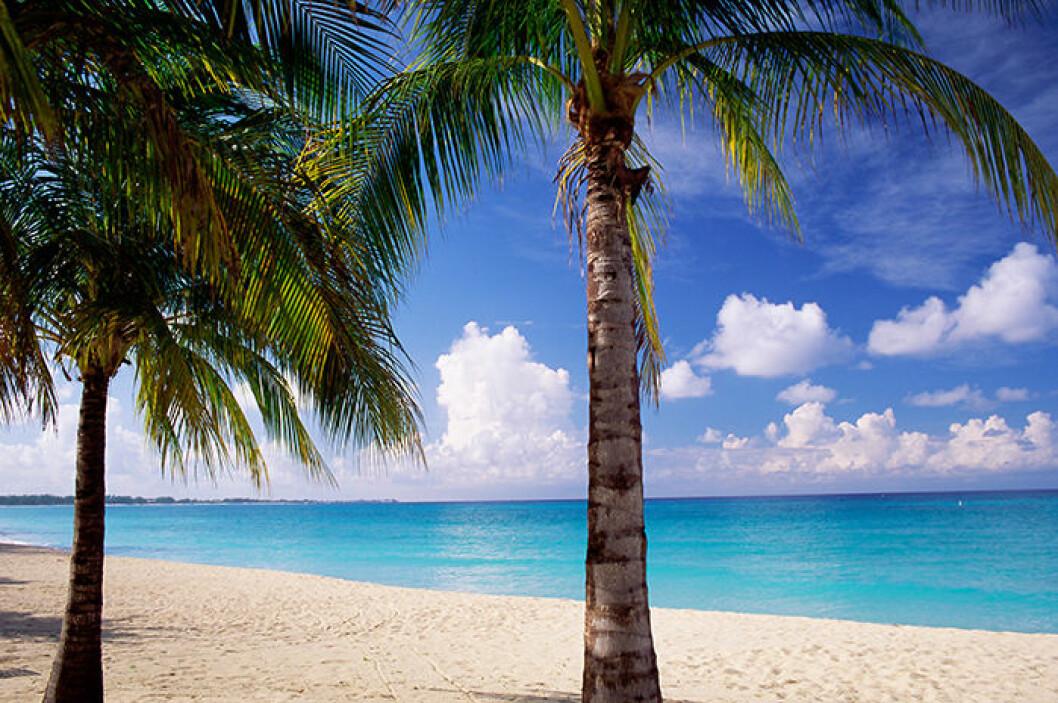Seven Mile Beach, Caymanöarna.