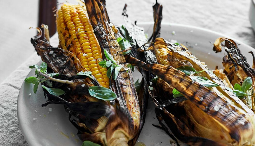 Recept på grillad majs med harissasmör