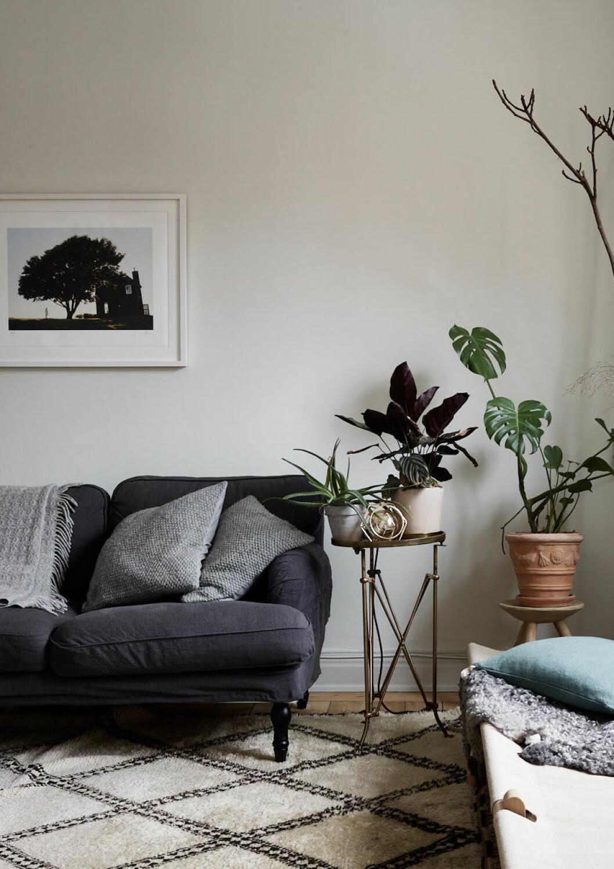 Växter i grupp är ett trendigt inredningstips, trendspanat från Formex 2019.