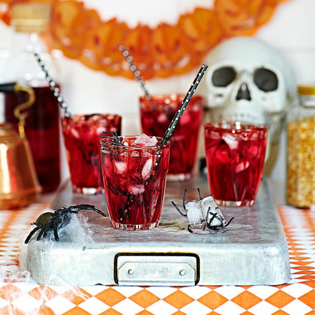 Blodröd lemonad med spindel-isbitar.