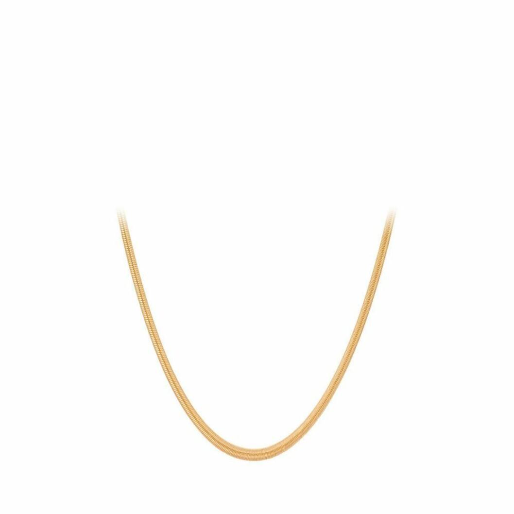 Halsband från Pernille Corydon är ett perfekt vardagssmycke i trendigt uttryck.