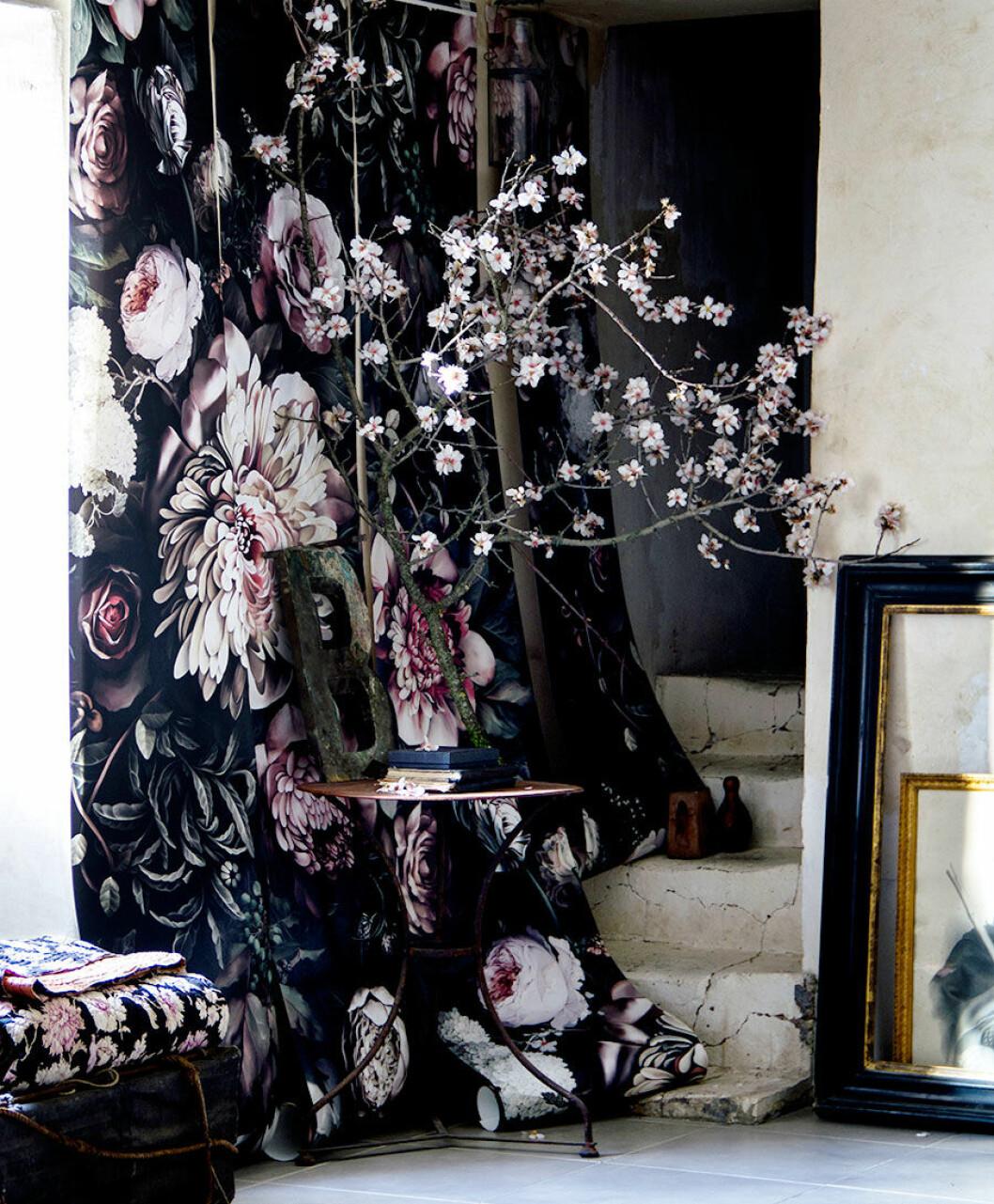 hans_blomquist_wallpaper_flowers_tapet_blommor