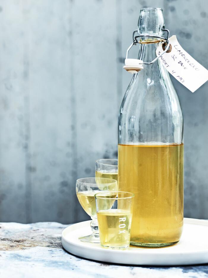 Bjud på hemgjord limoncello