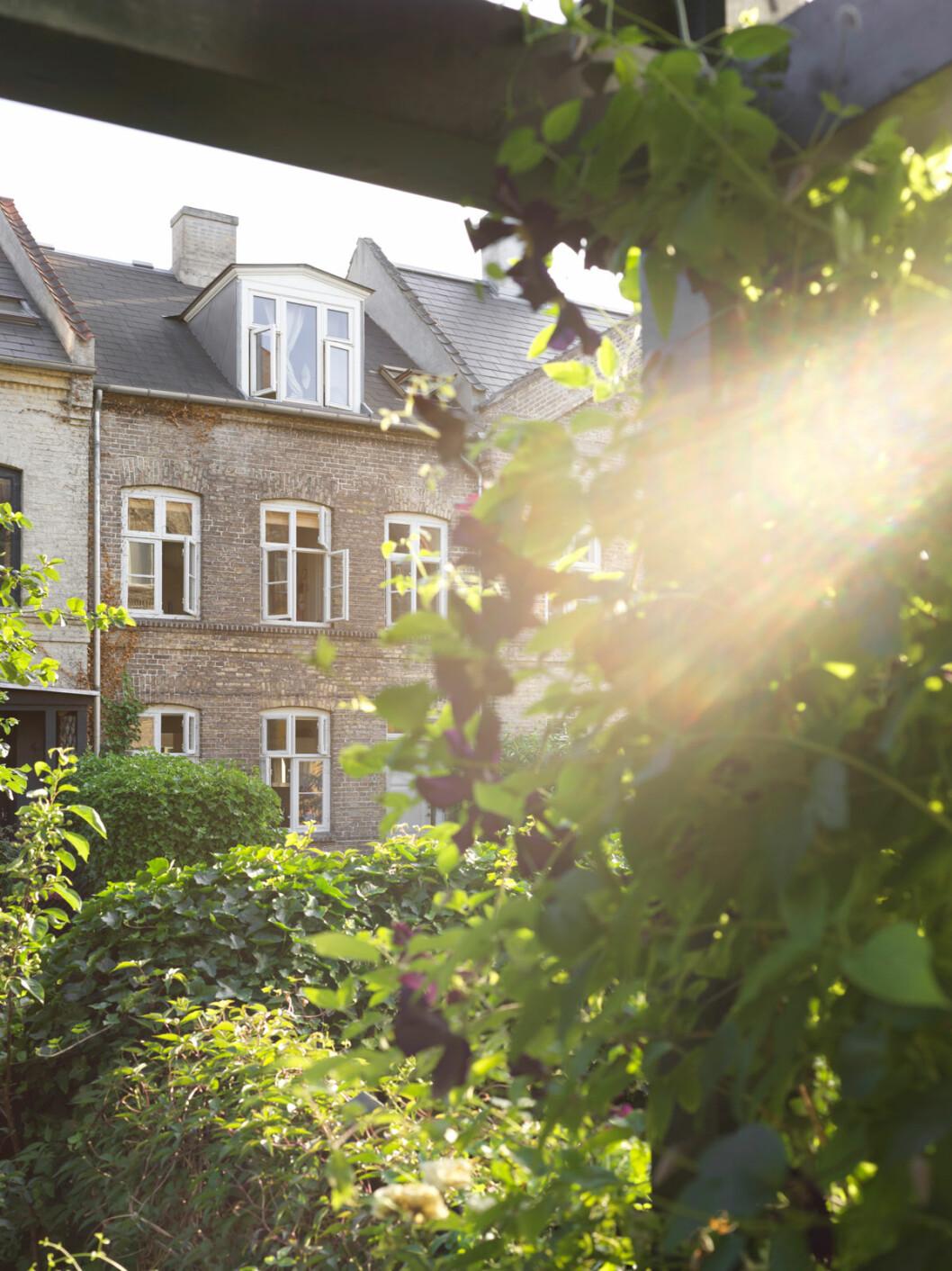 Hemma hos Mia Lagerman Köpenhamn huset
